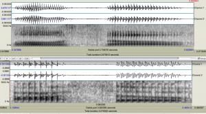 Waveform and Spectrogram image of speech sound in Praat speech analysis program.